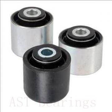 AST NUP248 M cylindrical roller bearings