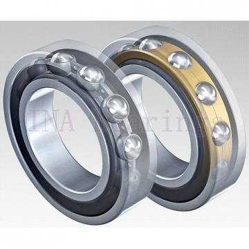 INA HK1012-RS needle roller bearings